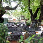 Εστιατόριο Διόνυσος Όρμα Πέλλας